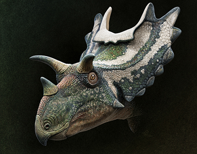 Ceratopsian faces