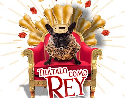 Campaña Petsy.mx Enero