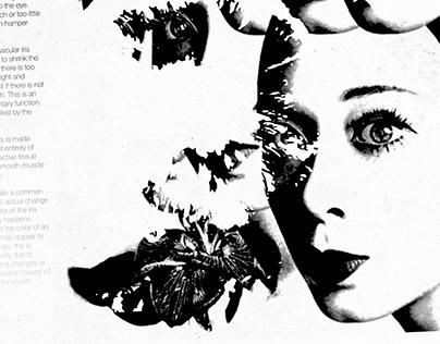 Windows to the Soul (Iris)