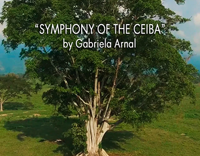 Symphony of the Ceiba by Gabriela Arnal