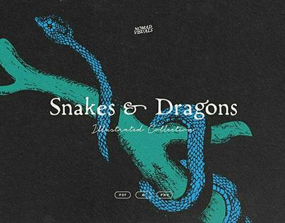 Snakes & DragonsDesigned byNomad Visuals