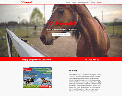 Basic website for veterinary office