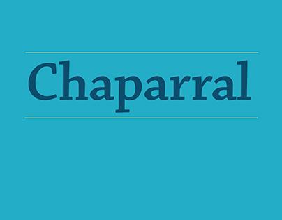 Typeface Promotion