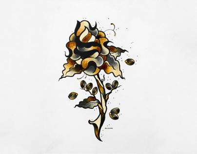 Coffee drawings + process video II