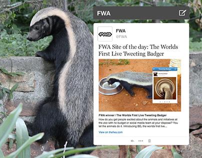 Johannesburg Zoo - Tweeting Badger