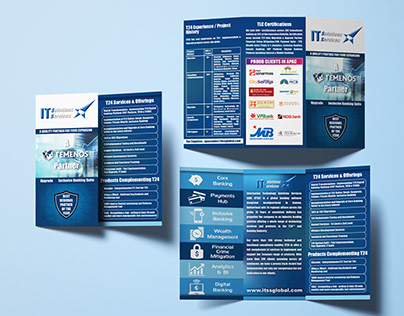 ITSS System Solutions Tri Fold Brochures