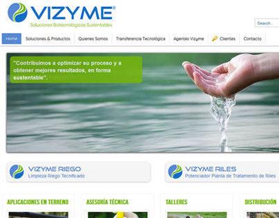 Vizyme web site