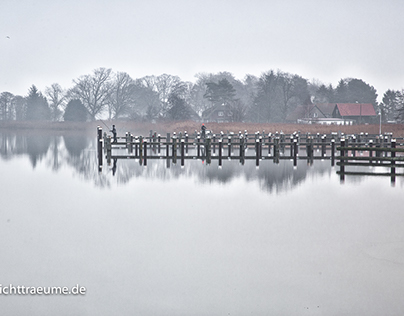 Ostsee, Darss