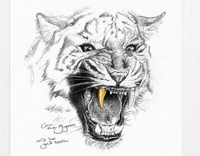Cara the Tiger