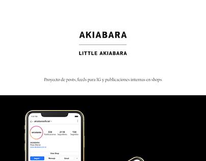 Posts para Akiabara (Tienda Oficial)