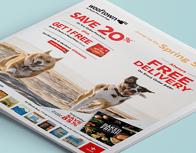 Wooftown Flyers & Direct Mail Campaigns