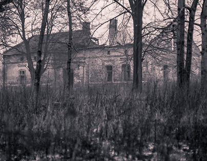 Scary Mansion, dream of home.