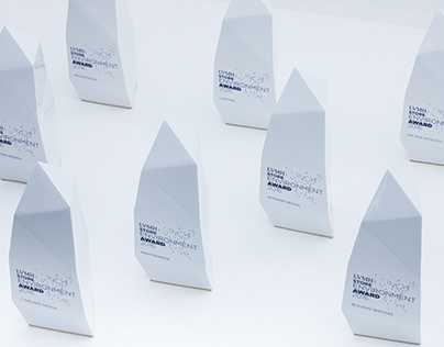 LVMH - Store Environment Awards