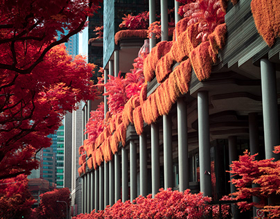 Singapore in Infrared