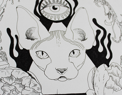 Third eye & cat