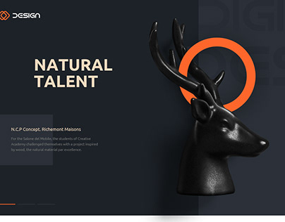 Template for themeforest theme
