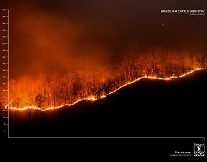 Fire Graphics   SOS Pantanal