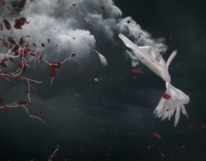 """mergrim """"Unending Chain feat. yuanyuan"""" MV"""