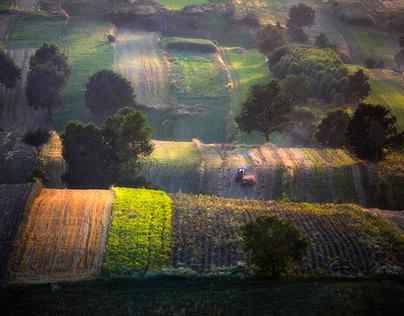 Small Tuscany. Jura. Poland.