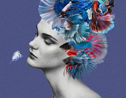 Collage illustrations of aquarium store catalog