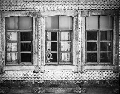 City-Windows