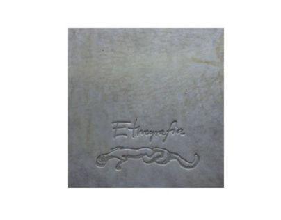 ETNOGRAFIA 2012