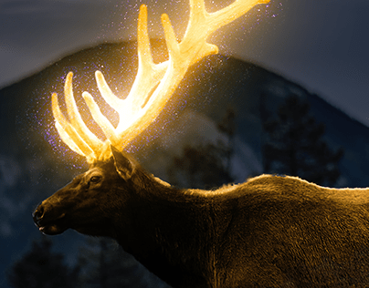 Glowing Deer