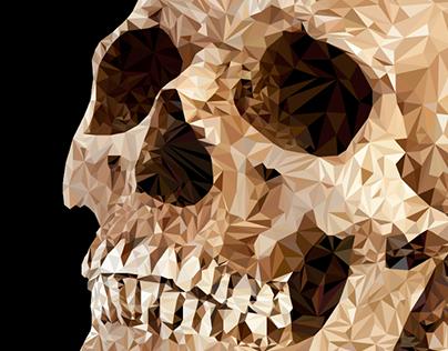 Ilustração Poligonal//Polygonal Illustration