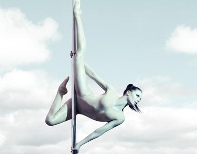 Pole Art 2013
