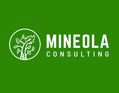 Mineola Consulting Branding & Web Design