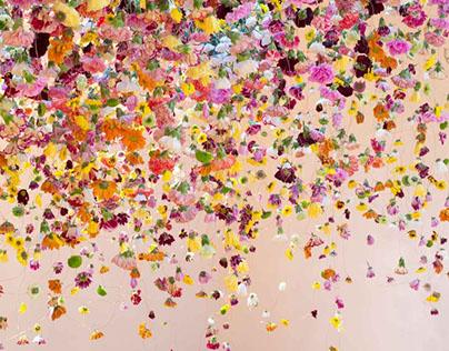 Deciphering flowers
