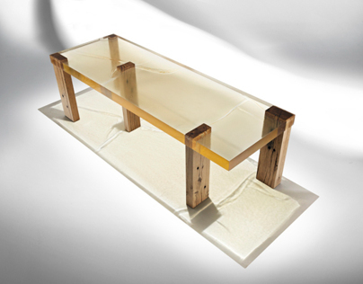 WOOD FOSSIL TABLE