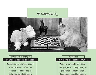 BIGJUNGLE_Metodologia & Serviços