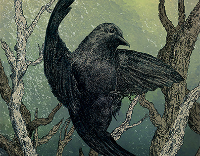 Birdness