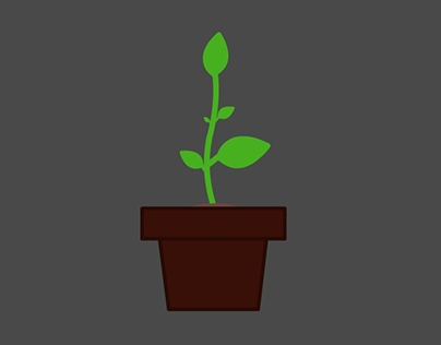 Plant growth icon animation