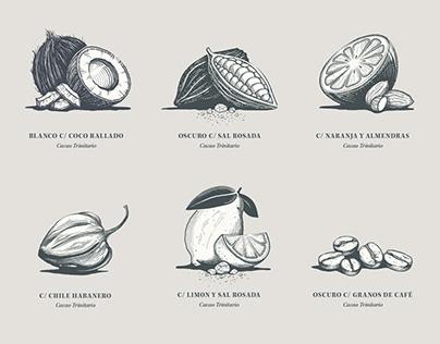 Palato Chocolate Illustrations