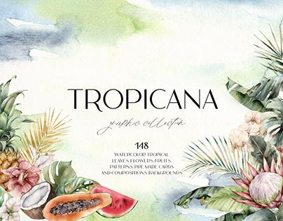 TROPICANA. Watercolor collection