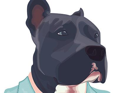 Doggo Named Benz