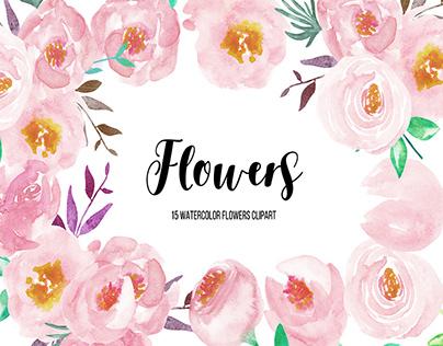 Watercolor Flower Peonies Clipart
