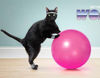 Work it Kitty!