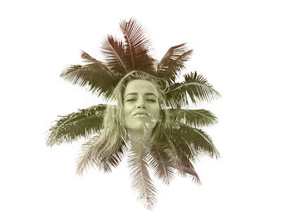 Blonde palm tree