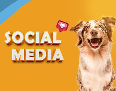 Social media - NF pet
