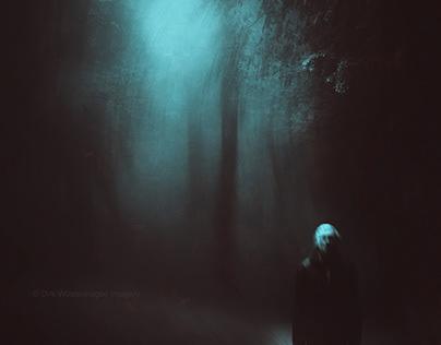 my night shadows