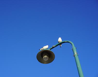 Lamppost on Blue