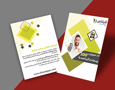Flyer design for Vitas misr and bee about Financing