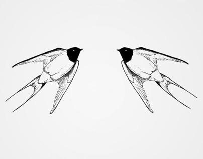 Follow By Swallow