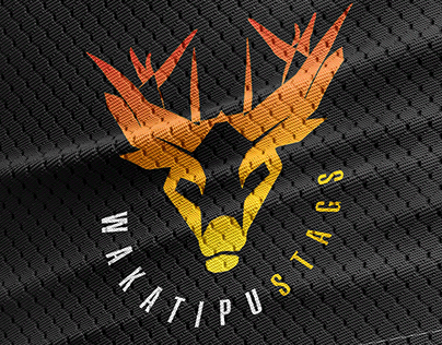 Basketball Team Concept Art / Queenstown/Wakatipu Stags
