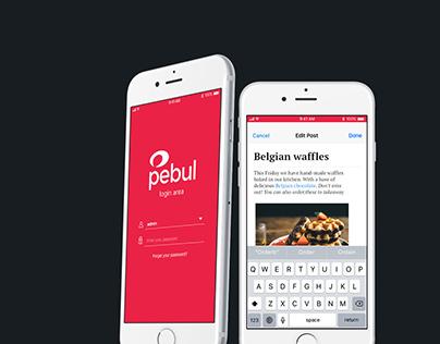 Pebul UI Design