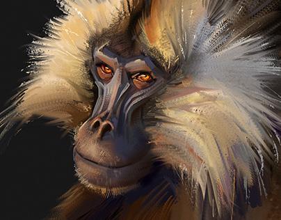 Monkeys study