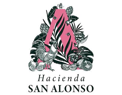Branding and Collateral Design: Hacienda San Alonso